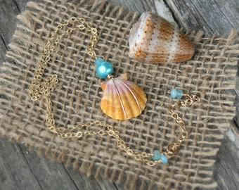 Sunrise Shell Necklace, Hawaii Jewelry, Hawaiian Jewelry, Sunrise Shell and Pearl Necklace, Sunrise Shell on Gold Fill Chain, Orange Shell