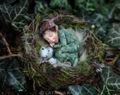Miniature pixie boy in nest 1:12 dollhouse size by Tatjana Raum