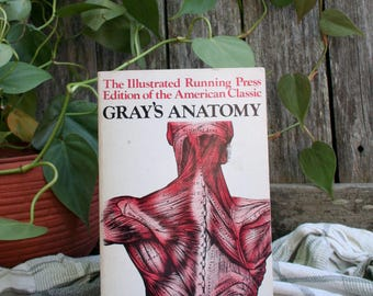 Gray's Anatomy / The Illustrated Running Press Edition of the American Classic / 1974 Paperback / 1901 Edition