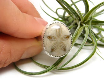 Little Fossilized Sand Dollar Silver Ring No. 2
