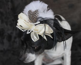 Cute black  color  mini  hat with    feather   for dog or cat