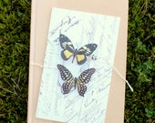 collection no. 24 silk butterflies . hair clips, pins, magnets . realistic gifts for birthday, wedding, bridesmaids, parties, every day use