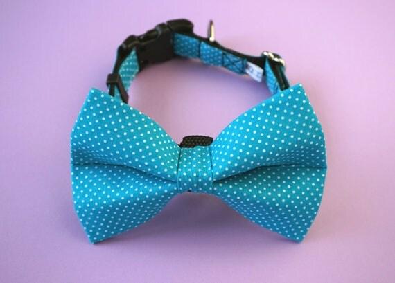 Teal Polka Dot Bow Tie and Collar