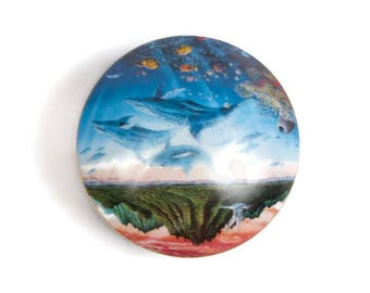 Vintage Dolphin Music Jewelry Box The Danbury Mint Tropical Wonderland Robert Lyn Nelson Music Box B2029 Made in Japan Handpainted Dolphins