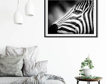 Zebra Fine Art Photography - Wildlife Art - Modern Wall Art - Black and White Photo - Monochrome Wild Animal
