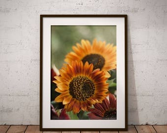 Sunflower Wall Art sunflower wall art | etsy