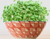 DIY Microgreens Garden Kit in Coral and White Geometric Rice Bowl Planter Complete Growing Kit includes Planter, Organic Seeds and Soil Mix