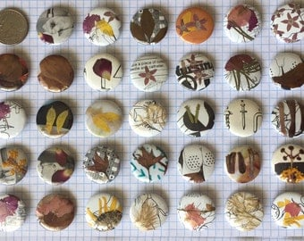 Pressed Flower Buttons (Pack of 5)