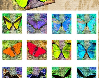 Butterfly Bel -38mm square - 1.5 inch inch square ,mirrors paper good glass pendant magnet hang tags craft instant download