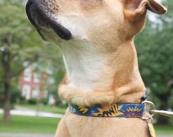 Comic Words dog collar - Pow!