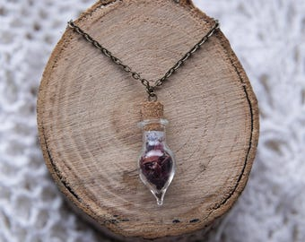 Dried Rose Petals In A Bottle Pendant Necklace