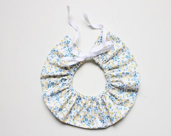 Frill collar blue and yellow flowers