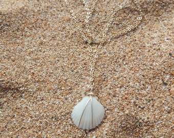 White Kauai shell with crescent moon necklace in 14k gold