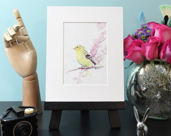 Golden Finch - Art Print