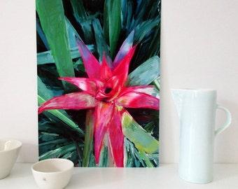 A2 Print, A3 Print, A4 Print, Red Bromeliad, Printable Foral Art, Downloadable Art Print, Instant Download, Instant Wall Art, Botanical Art