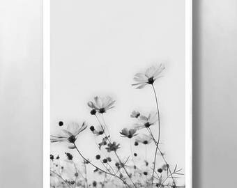 Floral Print, Wall Art, Wild Flower Print, Botanical Print, Vintage Wall Art, Black and White Print, Abstract Print, Kitchen Wall Art, Poppy