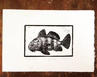 Black Drum: Linocut original hand-pulled relief print