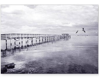 Safety Harbor, Florida Harbor Pier, Photo Greeting Card, Photo Note Card, Handmade Card, All Occasion Card, 5x7 Blank Card, Fine Art Print