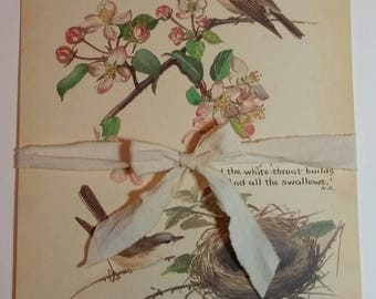 Beautiful Vintage Book Pages- Edith Holden- Country Diary of an Edwardian Lady- Great for use in Junk Journals, Art Journals, Etc.