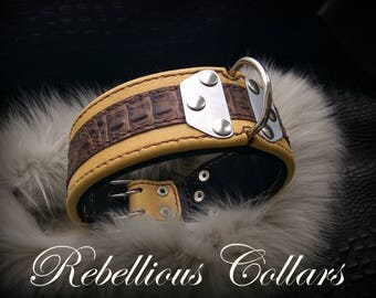 Leather dog collar with stainless steel plates