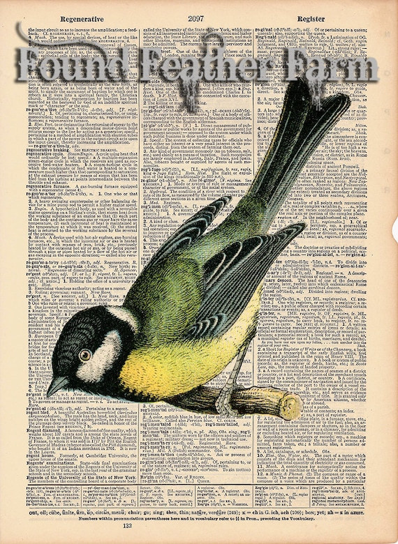 "Vintage Antique Dictionary Page with Antique Print ""Yellow Bird"""