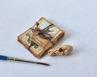 12th scale dragon skull and papers with rusted key