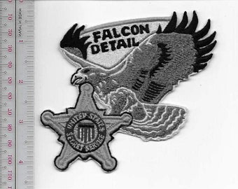 US Secret Service USSS Washington Vice President Protection Falcon Detail Agent Service Patch grey