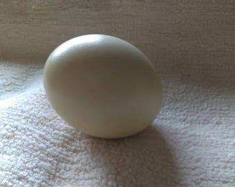 Ostrich Egg, vintage