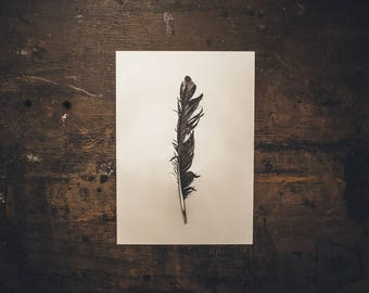 "PRINT 11,7""x8,3"" (29,7x21cm) ""SAVAGED FEATHER"""