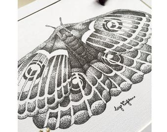 Emperor Moth Pen and Ink Illustration Art Print - Dotwork Insect Traditional Art Drawing, Wildlife and Nature Artwork