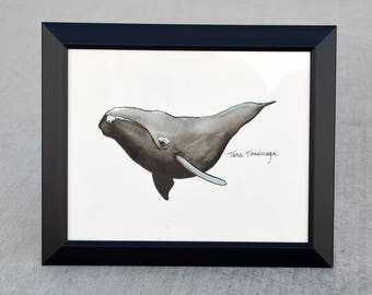 Right Whale Watercolor