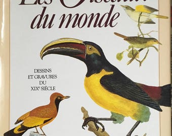 the birds of the world drawings and engravings of the XIX