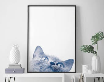 British Shorthair Cat Kitten Watercolour Print Wall Art | 4x6 5x7 A4 A3 A2