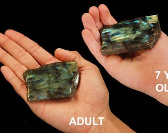 Labradorite Polished Slice 2 1/2 Inch HIGH Flash All Chakras Raw Rocks Rough Mineral Specimen Healing Crystals Chakra Stones Reiki Gemstone
