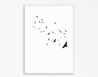 Flying birds. Nature photography. Black and white birds. Flying poster. Minimalist poster. Instant download