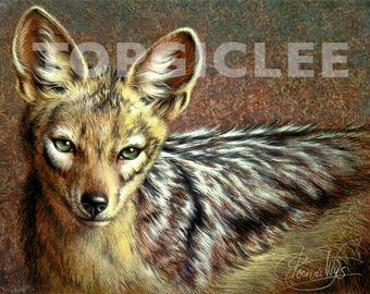 Jakhals - Meester Print van Acrylicverfwerk - Master Art Print created from Acrylic Painting Artwork, Jackal, Wildlife, Out of Africa