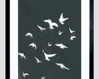 Flock of Birds Print, Black White Birds, Flying Bird Print, Birds in Flight, Bird Wall Art, 12x16'' Art Print F12x12095