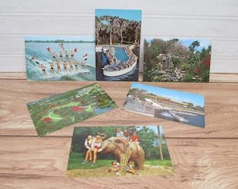 Six Vintage Cypress Gardens Postcards/1960s postcards