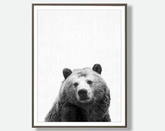 Bear Printable, Bear Digital, Bear Photography, Bear Photo, Printable Bears, Bear Wall Art, Bear Poster, Instant Bear
