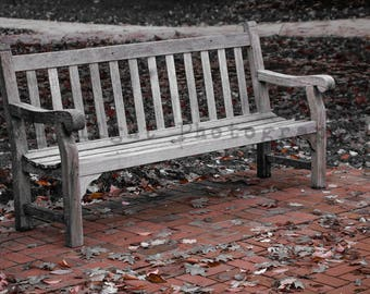Park Bench welcoming you on a cool fall day