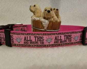All This And Brains Too Handmade Dog Collar 1 Inch Wide Large Only Last One