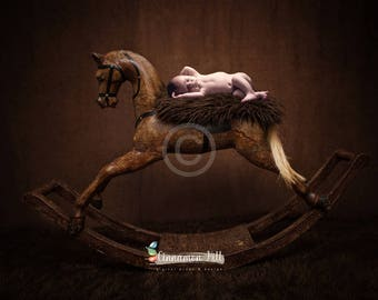 Digital Backdrop for Newborn Photography - Rocking Horse Background, Limited Edition