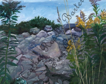 Print of Goldenrod and Coastal Rocks