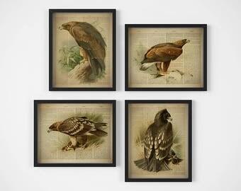 Dictionary art, Set of 4 prints, Birds printable, Print set, Home wall decor, Bird wall art, Eagle print, Vintage, Gift for men, 8x10, 11x14