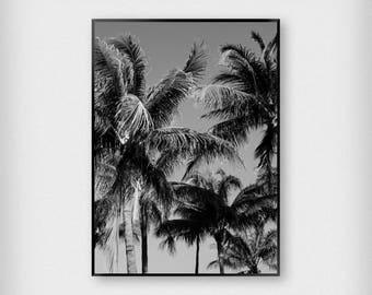 Palm Trees Print | Tropical | Black and White | Beach - Summer - Poster
