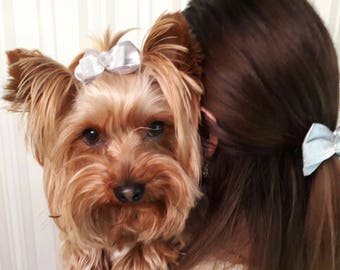 Beautiful bows for mom and her pet (2 bows)