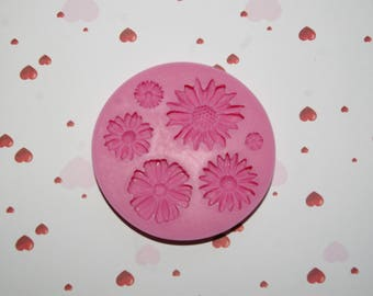 Silicone mold for making pretty polymer clay or cold porcelain flowers