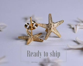 Small gold starfish studs