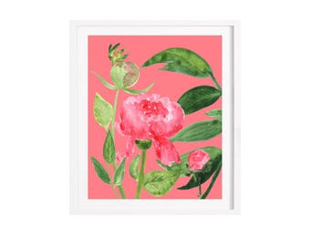 Rose illustration Giclee print 21 x 29.7 cm