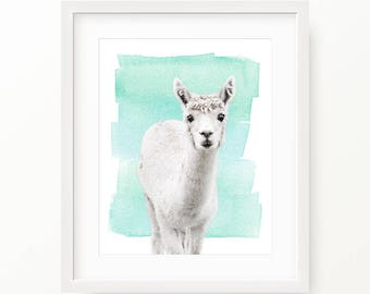 Watercolor Alpaca Print, Baby Alpaca Wall Art, Nursery Animal, Nursery Decor, Alpaca Printable Poster, Alpaca Digital Print Digital Download